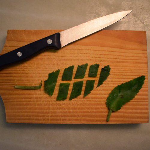 Cut leafs in bite-size pieces